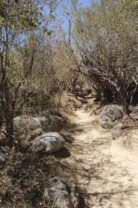 Sentiero per Devil's Bay