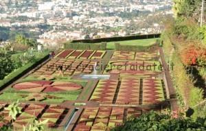 Funchal giardino botanico